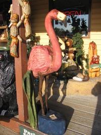 Flamingoeureka_3